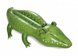 Игрушка надувная: Крокодил 41010 (168смх89см) (1/12)
