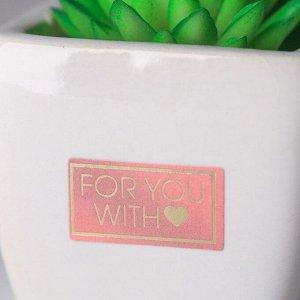 Суккулент в керамическом горшочке For you with love. 7.5 ? 5.5 ? 6 см
