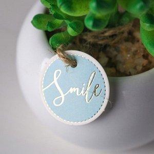 Суккулент в керамическом горшочке Smile. 9.5 ? 7.5 ? 7.5 см