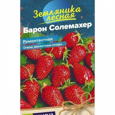 Семена Алтая. Отличная всхожесть, Огромный выбор сортов — Ягода — Семена ягод