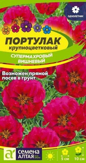 Портулак Супермахровый Вишневый/Сем Алт/цп 0,1 гр.