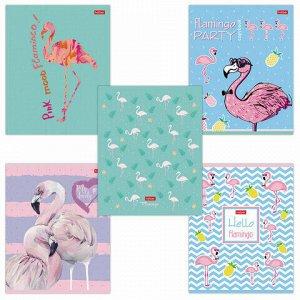 "Тетрадь 18 л. HATBER скоба, клетка, обложка картон, тиснение, ""Фламинго"" (5 видов в спайке), 18Т5тВ1"