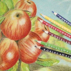 """Карандаши цветные ЮНЛАНДИЯ """"ЮНЛАНДИК-ДЕТЕКТИВ"""", 6 цветов, трехгранные, с раскраской, 181679"""