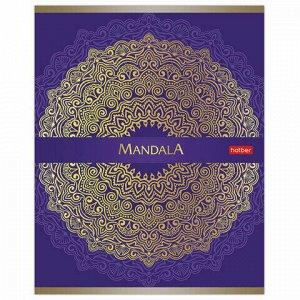 """Тетрадь А5 96 л. HATBER скоба, клетка, 3D фольга, матовая ламинация, """"GOLD MANDALA"""" (5 видов), 96Т5лофВ1"""