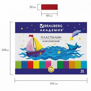 """Пластилин классический BRAUBERG """"АКАДЕМИЯ"""", 36 цветов, 720 г, со стеком, ВЫСШЕЕ КАЧЕСТВО, 105901."""