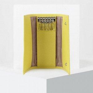Ключница, 6 карабинов, цвет жёлтый