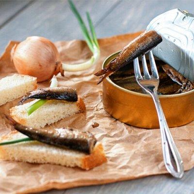 Белорусочка! Бакалейная группа продуктов! Все точки! — Килька и шпроты!✔ — Рыбные