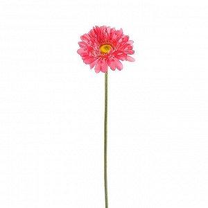 Искусственное растение Haylie (57 см)