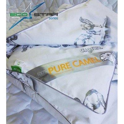 ECOLAN — домашний текстиль, яркие принты! Наматрасники — Одеяла серии EcoStar — Одеяла