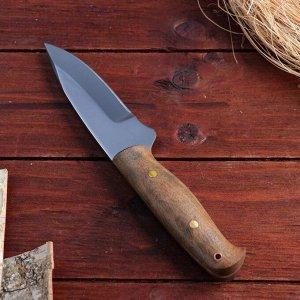 Нож охотничий «Миньяр» НР38, ст. 95Х18, рукоять ценные породы дерева, 20 см