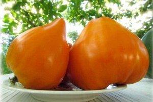 Томат Бычье сердце персиковое ЦП