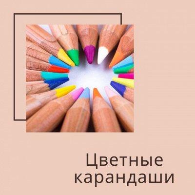 New Moralовая! Большая канцелярская и море нужностей! — Цветные карандаши, фломастеры, мелки — Канцтовары