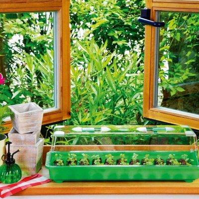Все для сада и огорода (много новинок)  — Товары для рассады — Кашпо и горшки