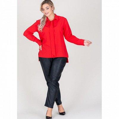 ELISEEVA OLESYA  SALE  70% До 58 размера! — Топы, рубашки, блузы — Одежда