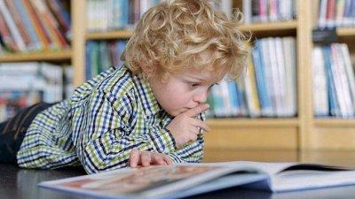 Gerdavlad. Много новинок: транспорт, активные игры — Познавательная литература для детей. Обучение