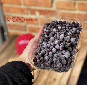 Смородина чёрная 1кг МОРСианин