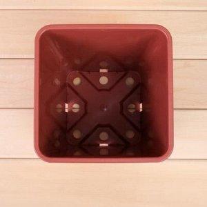 Горшок для рассады, 5,5 л, 19,5 ? 19,5 ? 23 см, терракотовый