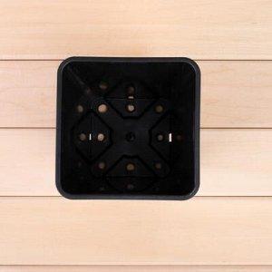 Горшок для рассады, 2,8 л, 15 x 15 x 20 см комплект из 5 шт