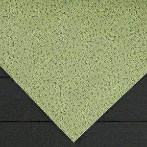 Материал укрывной, 1,6 ? 6 м, плотность 100, с УФ-стабилизатором, фисташковый, «Спанграм Зима»