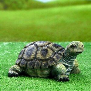 "Садовая фигура ""Черепаха"" 21,5х17х11см"