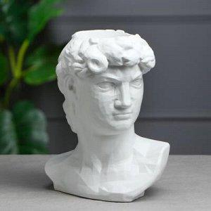 """Органайзер-кашпо """"Голова Давида"""", белый, 26 см"""