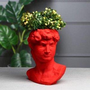 """Органайзер-кашпо """"Голова Давида"""" красный, 26 см"""