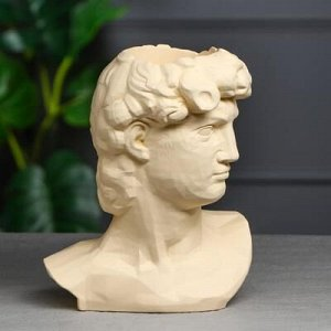 "Органайзер-кашпо ""Голова Давида"" бежевый, 26 см"
