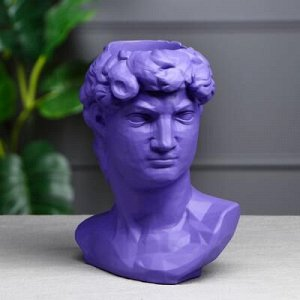 """Органайзер-кашпо """"Голова Давида"""", сиреневый, 26 см"""
