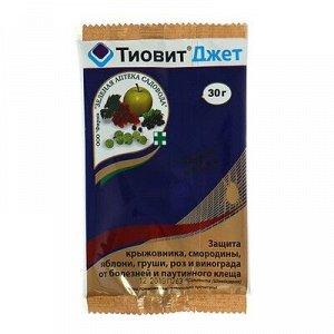 Средство для защиты растений от заболеваний и паутинного клеща Тиовит джет 30г