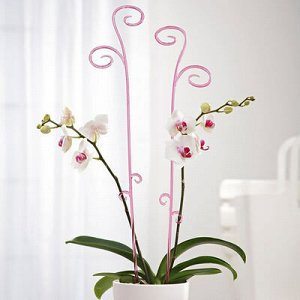 Держатель для орхидеи 60 см, цвет МИКС