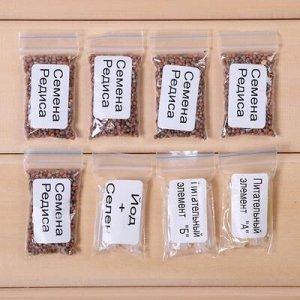 Набор для выращивания микрозелени Vegebox, 5 лотков, редис