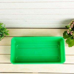 Ящик для рассады, 40 ? 20 ? 9 см, зелёный