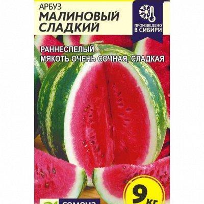Семена Алтая. Отличная всхожесть, Огромный выбор сортов — Арбуз, дыня — Семена ягод