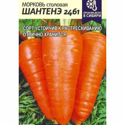Семена Алтая. Отличная всхожесть, Огромный выбор сортов — Лук, морковь — Семена овощей