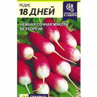 Семена Алтая. Отличная всхожесть, Огромный выбор сортов — Редис, репа, редька — Семена овощей