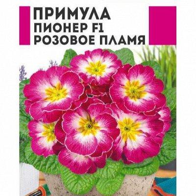 Семена Алтая. Отличная всхожесть, Огромный выбор сортов — Цветы разные 2 — Семена цветов