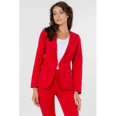 L L CAT — распродажа! Современная одежда для женщин — Жакеты - СКИДКИ — Жакеты