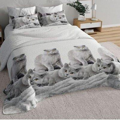 ™ВИКТОРИЯ - постельное белье от 775 руб, текстиль, трикотаж  — КПБ Бязь 3D — Спальня и гостиная