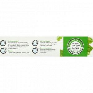Зубная паста AltaiBio для профилактики кариеса солодка бадан, 75 мл