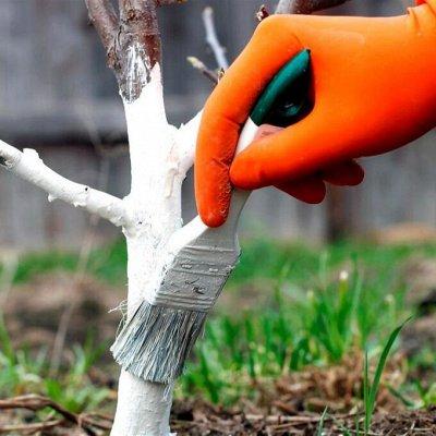 ✔Для садоводов и огородников. Всё нужное для полива — Удобрения. Средства от вредителей — Органо-минеральные
