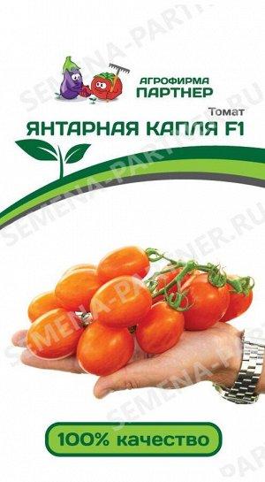 ТМ Партнер Томат Янтарная Капля F1 ( 2-ной пак.)/ Гибриды томата черри для открытого грунта