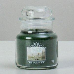 Свеча ароматическая в банке Вечнозеленая хвоя Evergreen Mist, 104 гр, 25-45 ч