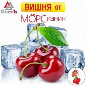 Вишня без косточки 1кг МОРСианин