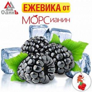 Ежевика 1кг  МОРСианин