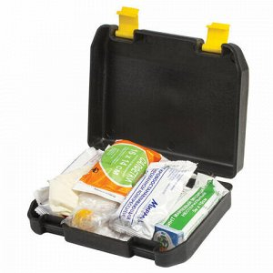 Аптечка первой помощи АВТОМОБИЛЬНАЯ, пластиковый футляр, состав - по приказу № 325, 9825