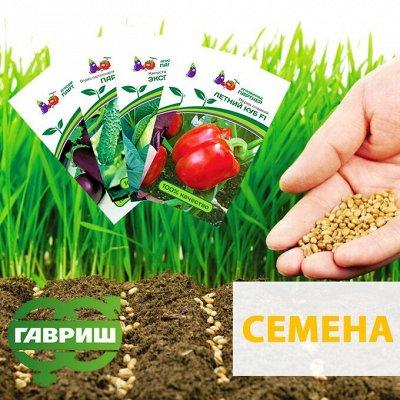 Нужная покупка👍 Открываем сезон посева
