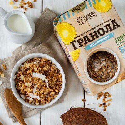 Настоящий йогурт VIVO+ Оливковое масло Еxtra,Pomace Италия   — Настоящее Здоровое питание! Гранола, орех паста, каша лен 14 — Диетическая бакалея