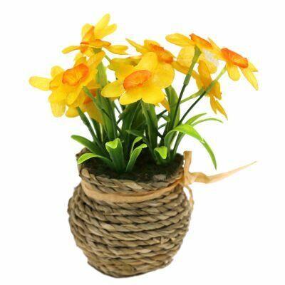 Дом, Дача, Сад и Огород — круглый год! Хит-цены — Цветы декоративные и все для украшения