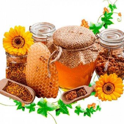 Приморский Вкусный и Полезный Мёд-2020. Быстрая раздача — Продукты пчеловодства (для ИММУНИТЕТА) НОВИНКА — Мед
