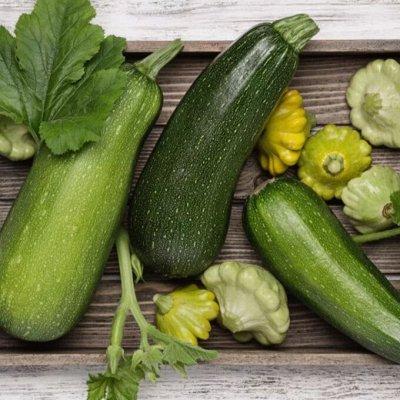 Мудрый дачник🌱 Акция! Лук севок от 69 рублей! Голландия  — Кабачки и патиссоны — Семена овощей
